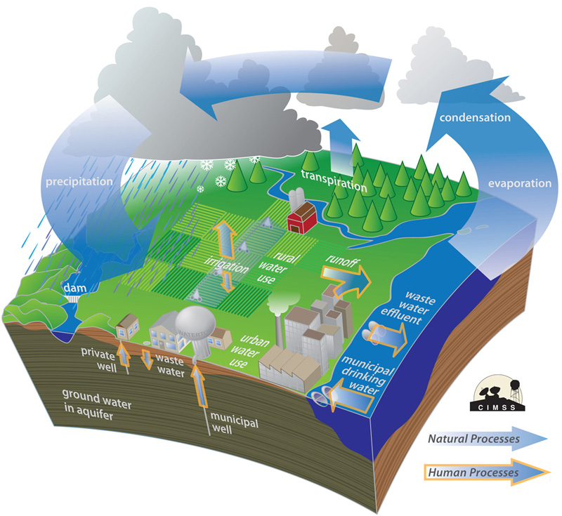 watercycle image